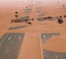 الطريق الرابط بين السعودية وقطر بعد اغلاق الحدود