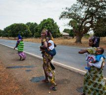 يصادف اليوم 18 فبراير استقلال غامبيا نبذة عن أصغر دول افريقيا