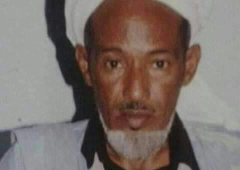 محمد الأمين الشيخ العالم والداعية والمفكر